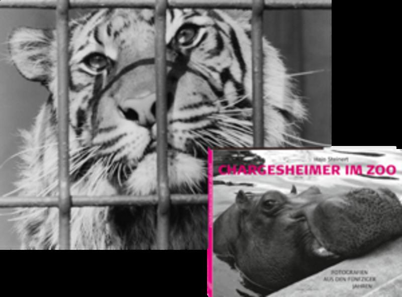 Chargesheimer im Zoo – VORZUGSAUSGABE